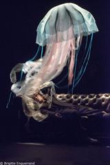 http://www.theatreonline.com/BDDPhoto/Affiche/35406.jpg