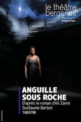 Anguille sous roche